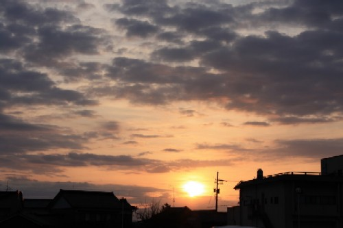 20100201asahi1.jpg