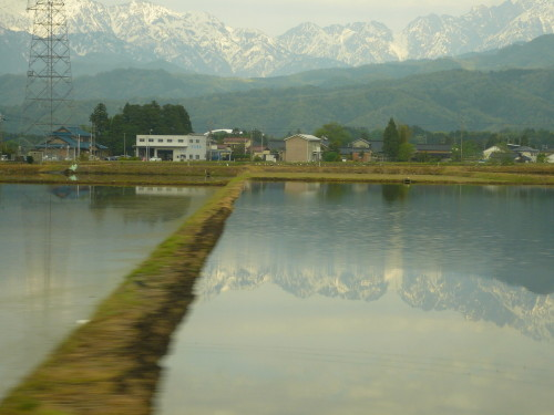 20110513tanbo30001.JPG